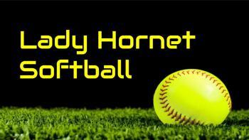 Lady Hornet softball tshirts