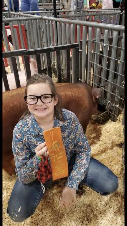 "Velesky sisters ""hog"" the awards at San Antonio Livestock Show"