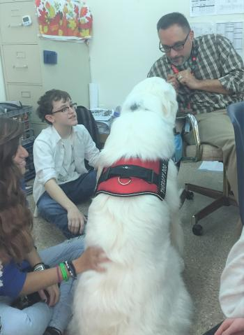 Cove High therapy dog reduces student/staff stress