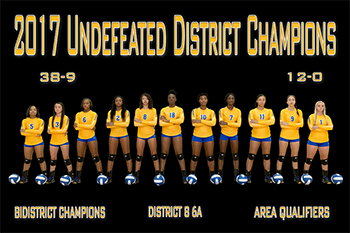 2017 Lady Dawg Volleyball Team - 38-9, 12-0, Undefeated District Champs, Bi-District Champions, District 8 6A, Area Qualifiers.