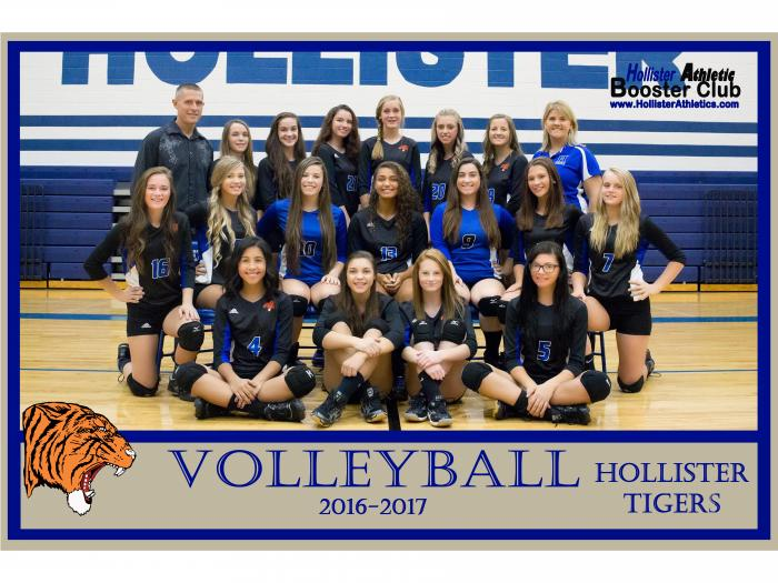 2016-2017 Lady Tiger Volleyball