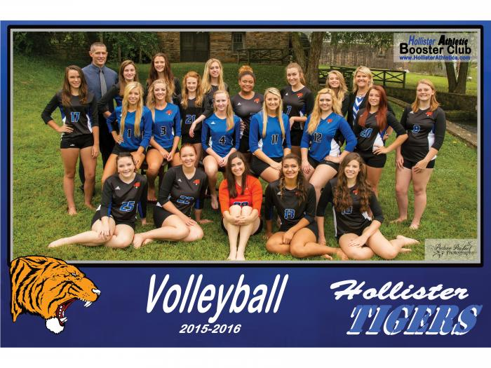 2015-2016 Lady Tiger Volleyball