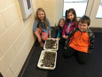 Students showing alfalfa