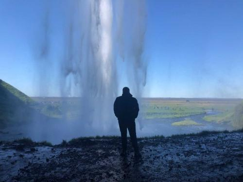 Mr. Remy at Seljalandsfoss Waterfall in Iceland