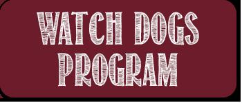 Watch Dogs Program