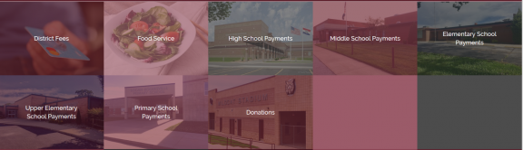Screenshot of LR school store payment categories