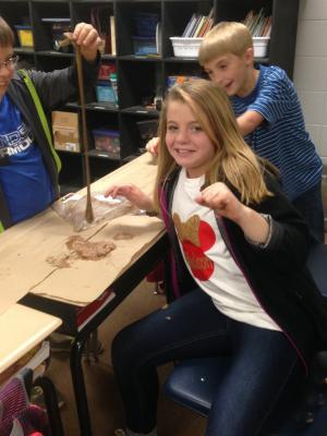 Digestive System Experiment