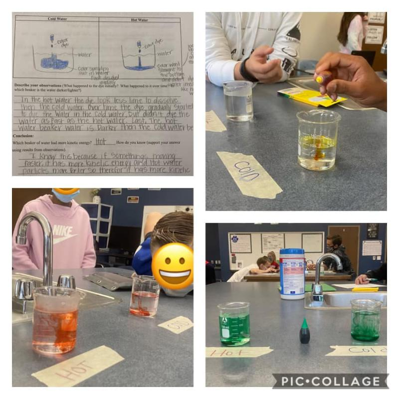 6th Grade Science classes got to enjoy some hands-on science investigations!!