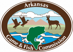 AR Game and Fish Junior Duck Stamp Competition