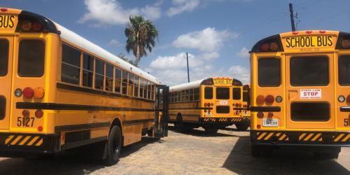 School Buses Image