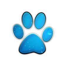 cougar paw