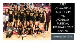 Thumbnail Image for Article Girls Basketball Area Champions