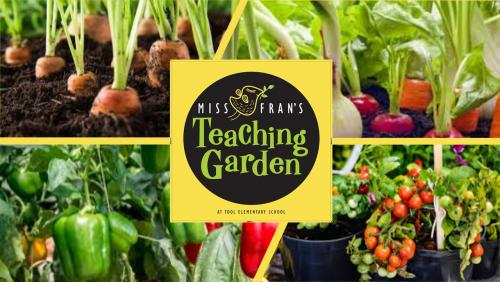 Miss Fran's Garden Picture