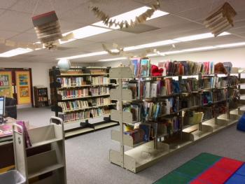 Elementary Library Picture