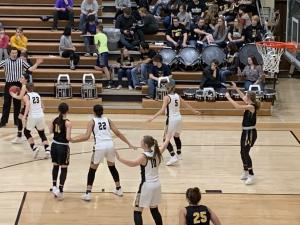 Ladybugs vs Woodward - Feb. 12, 2019
