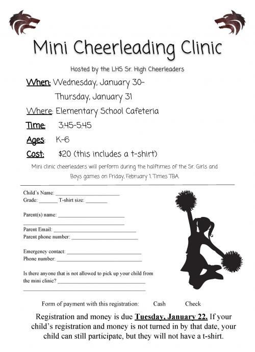 Mini Cheer Camp Form
