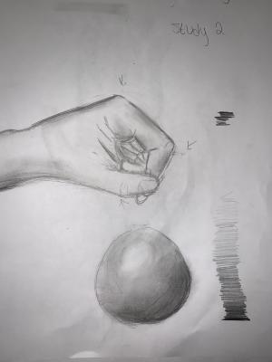 Art 1 hand study