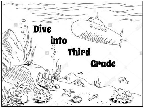 Dive into 3rd Grade