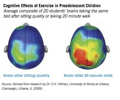 Brain Effects with Physical Activity