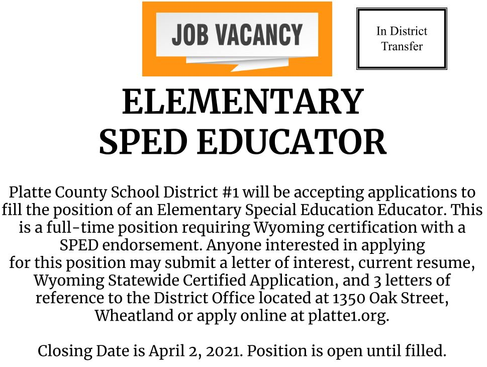 Elementary Special Education Educator