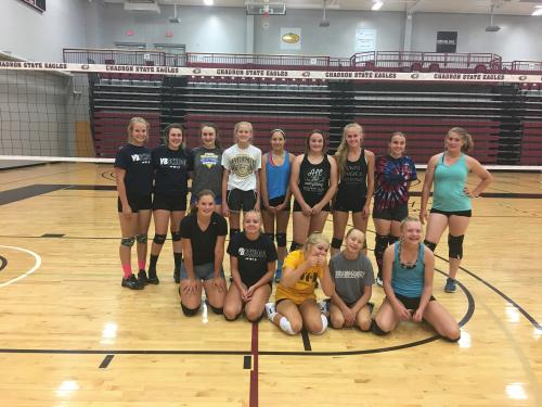 Wheatland Volleyball Team at CSC Team Camp