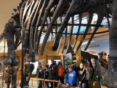 Visiting the Geology Museum.
