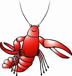 Third Graders Need Crawdads for Science