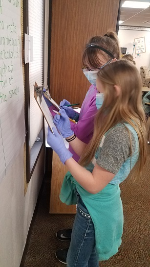 Operating on Expressions - 5th grade practiced their current math topic.