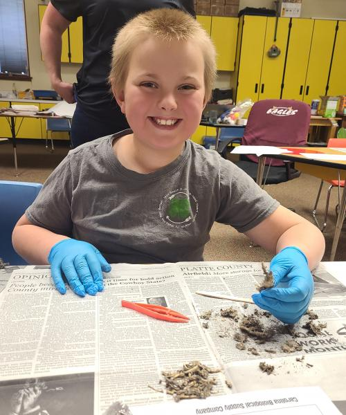 Tra with  owl pellets