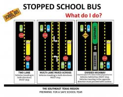 What Do You Do When A School Bus Stops?