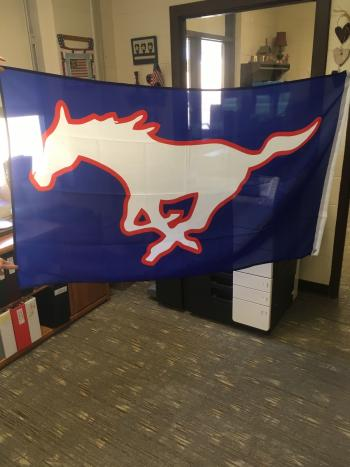 Image of our Spirit Flag