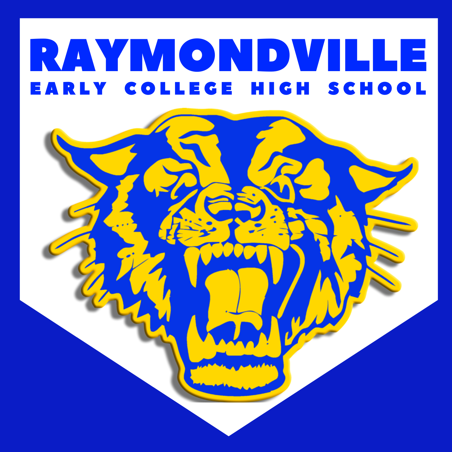 RAYMONDVILLE EARLY COLLEGE HIGH SCHOOL