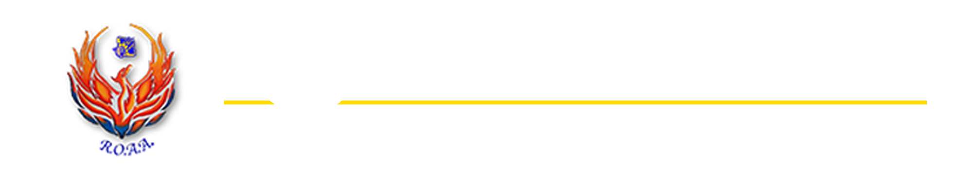 Raymondville Options Academic Academy Logo