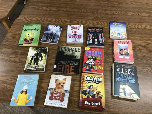 Some new books available at the High School Library