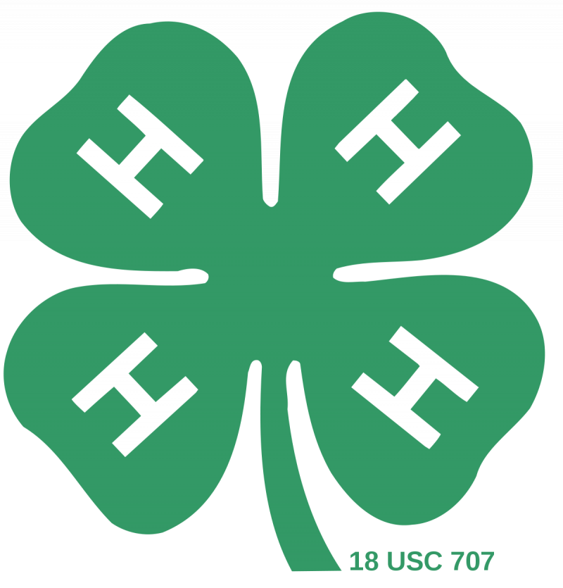 An Image showing 4-H