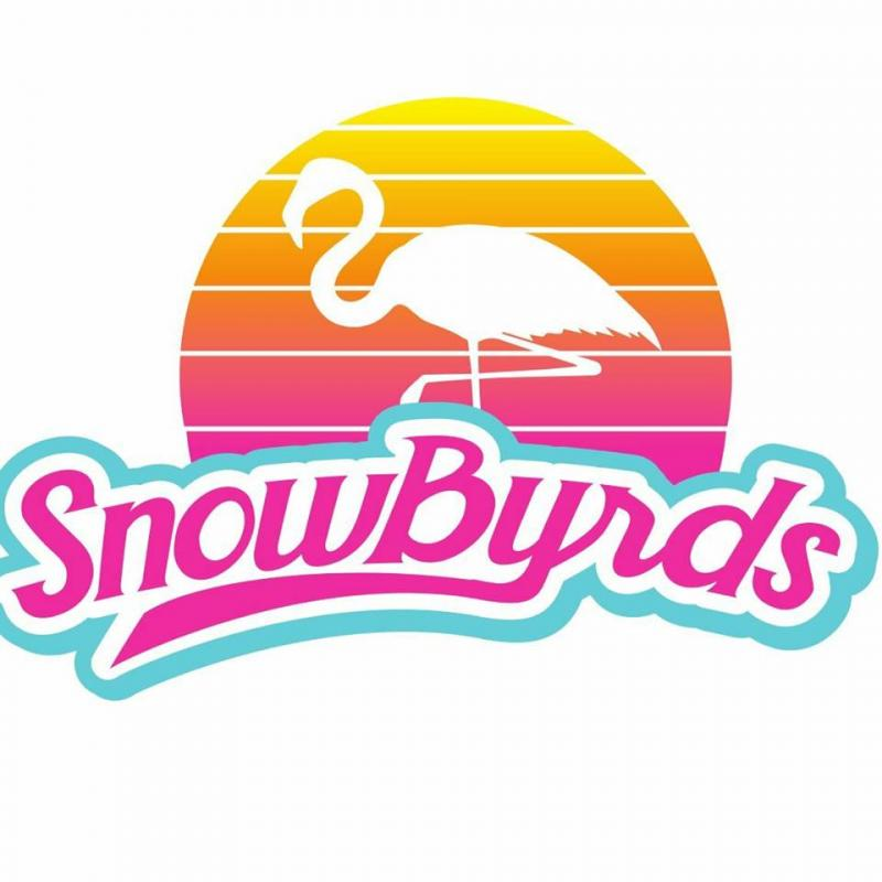 An Image showing SnowByrd's Shaved Ice