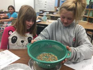 Sifting Sand and Pebbles