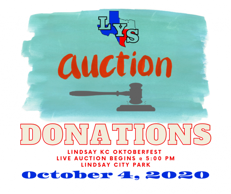 lindsay youth supporters live auction graphic. Auction is October 4.