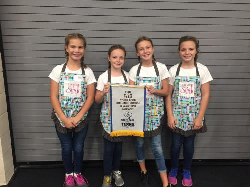 4-h students at State Fair