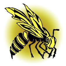 Hackett Official Hornet