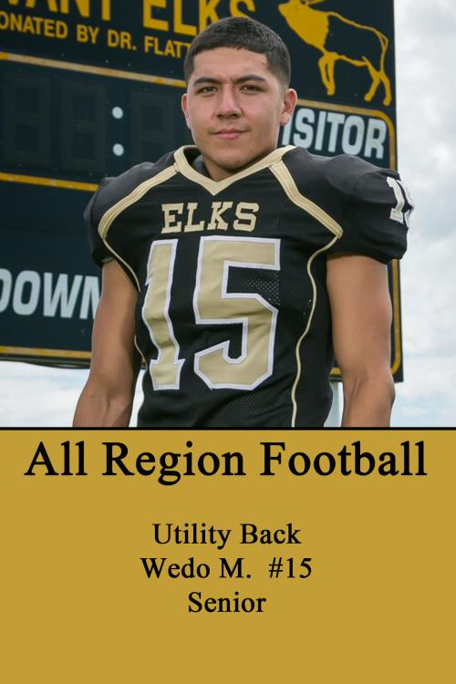 Wedo M-All Region Football