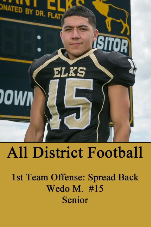 Wedo M--All District Football