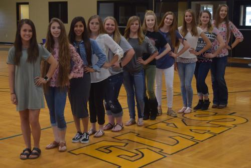 2018-2019 HS Cheerleaders