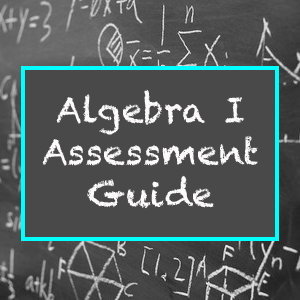 Algebra I Assessment Guide