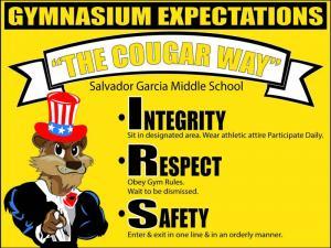 Gymnasium Expectations