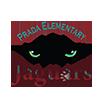 prada elementary logo