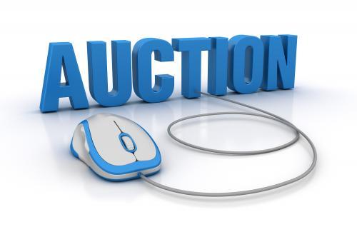 Webcast Online Auction