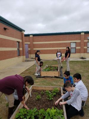 GT Students working on their Harvest Garden