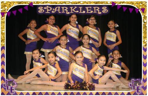 Sparklers Dance Team