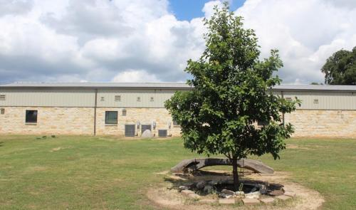 Center Point Middle School and Lucero Memorial Tree